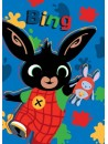 Chlapecká flísová deka s obrázkem zajíčka Binga Bunny. Je vyrobena z velmi příjemného a měkkého materiálu. Stálost barvy i po mnoha vyprání. Rozměr 100 x 140 cm.