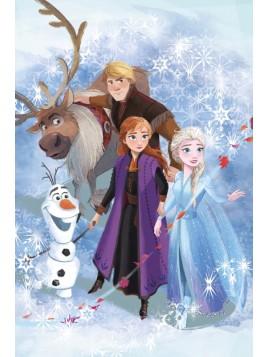 Dětská hřejivá fleecová deka Ledové království II. (Frozen)